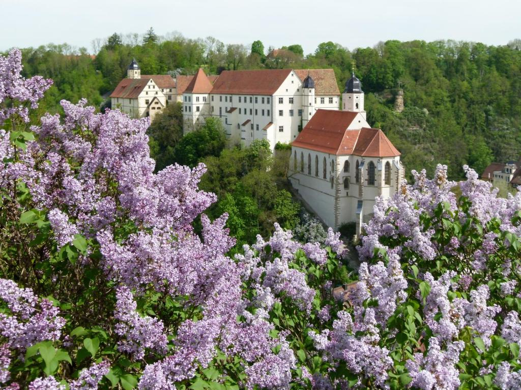 A bird's-eye view of Schloss Haigerloch
