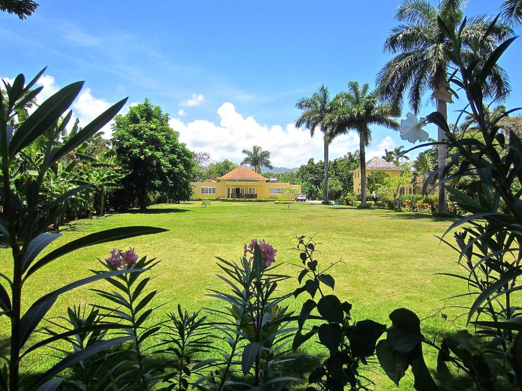 Morning Glory Villas جامايكا Mammee