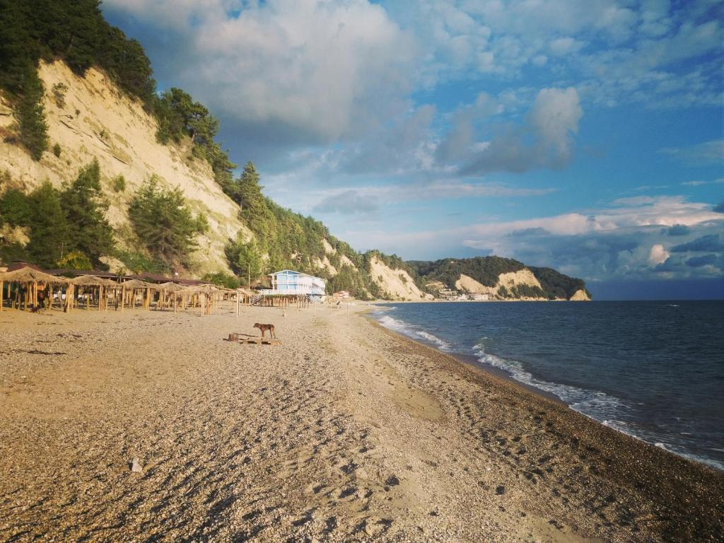 связи лдзаа пляж в абхазии фото самурая