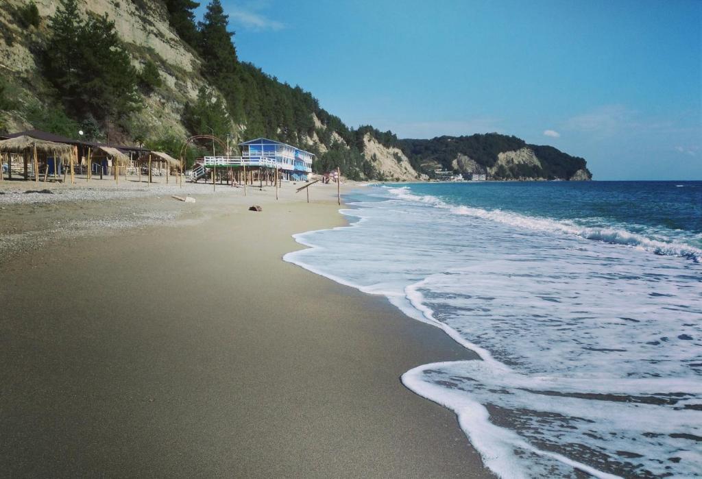 лдзаа пляж в абхазии фото является