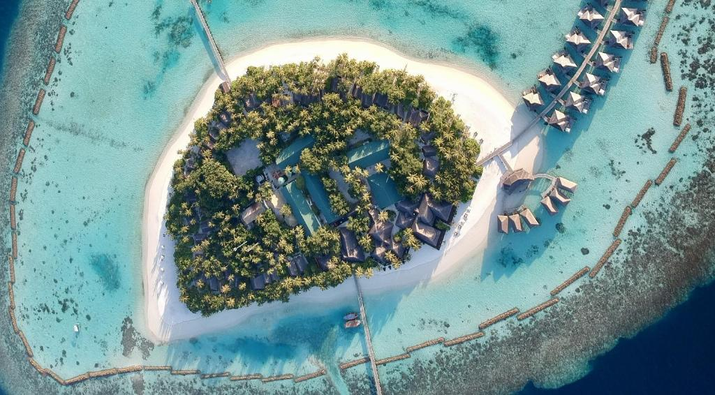 A bird's-eye view of Vakarufalhi Maldives