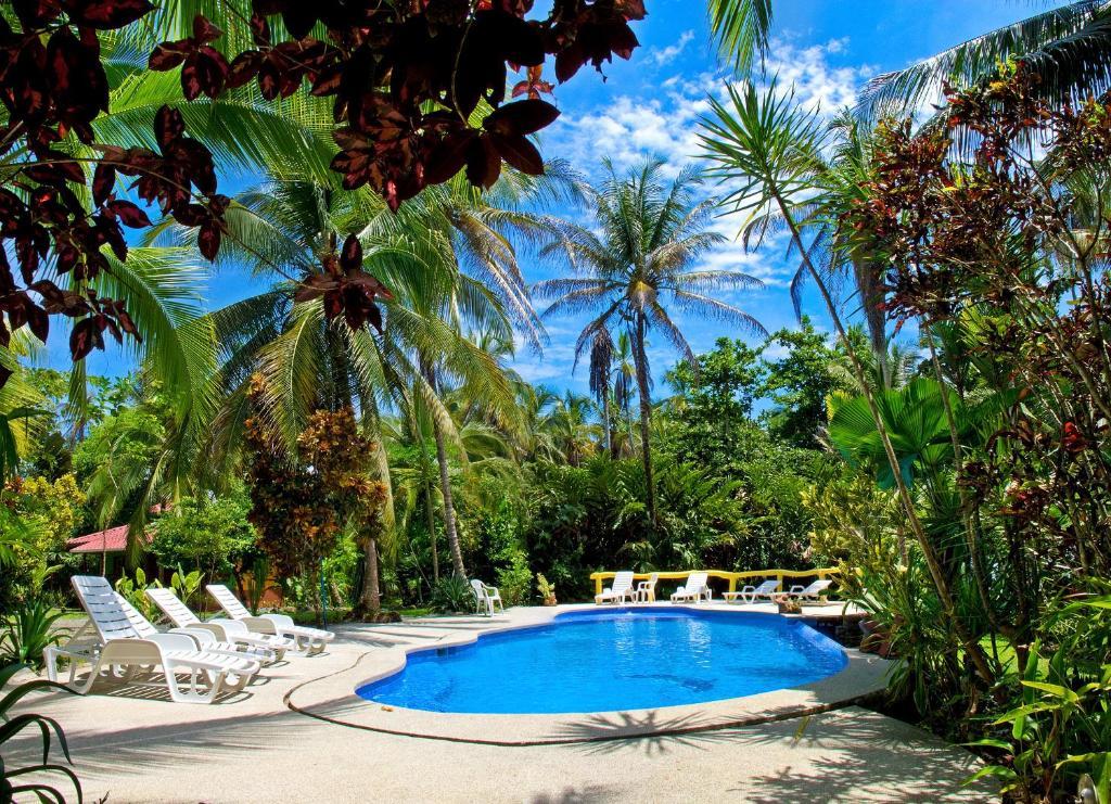 The swimming pool at or close to Hotel La Diosa