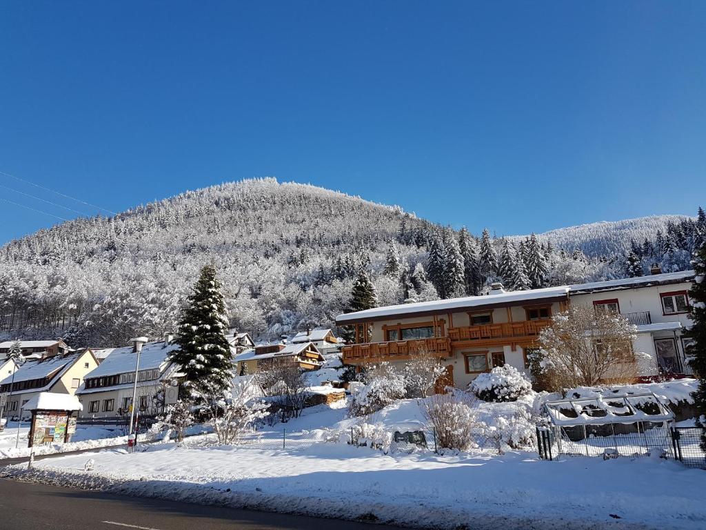 Feldberg-Holiday during the winter