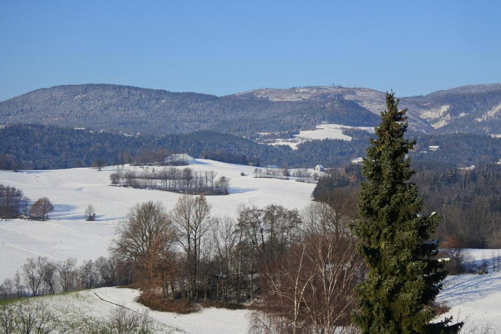 Birkfeld, Austria Business Events   Eventbrite