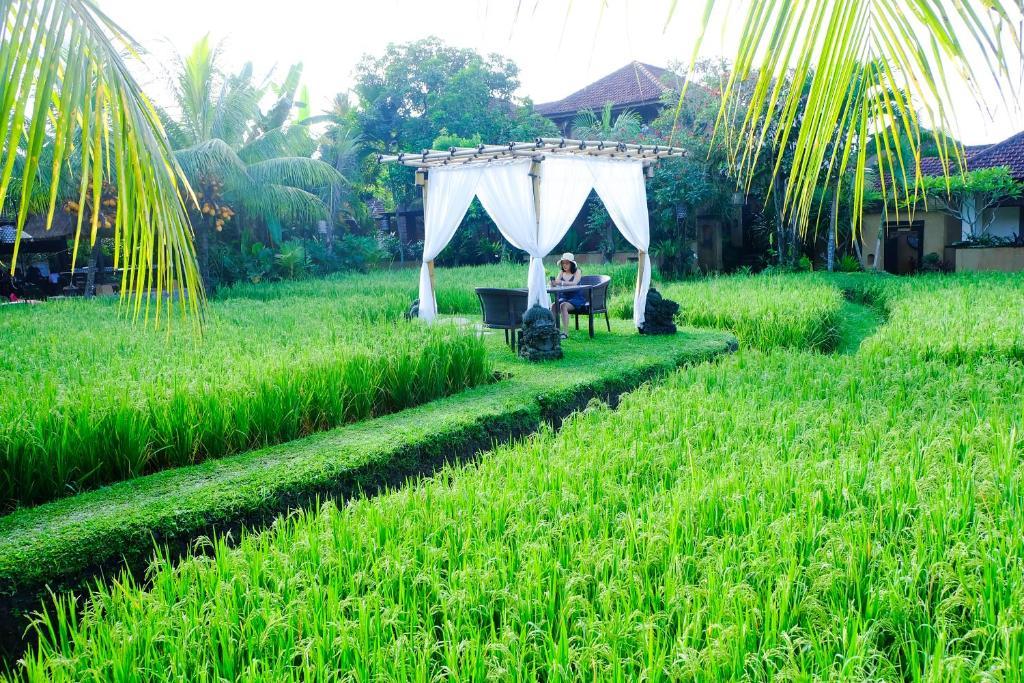 Jardín al aire libre en Bebek Tepi Sawah Restaurant & Villas