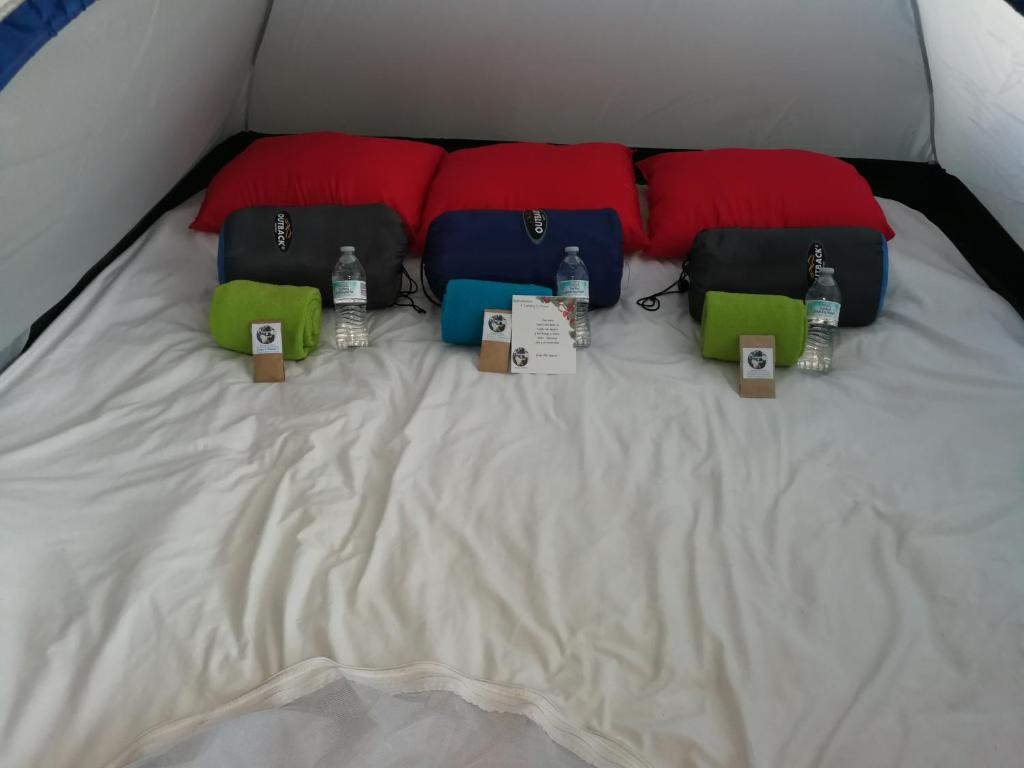 A bed or beds in a room at Camping & Travel