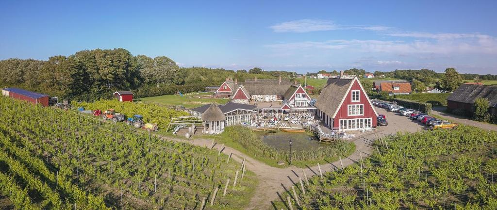 A bird's-eye view of Arilds Vingård