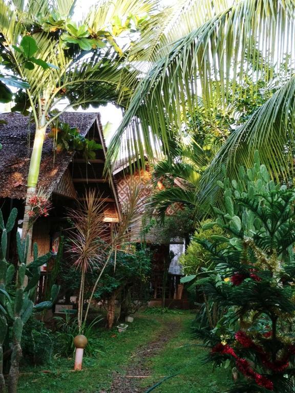 Ein Garten an der Unterkunft Reggae Guesthouse