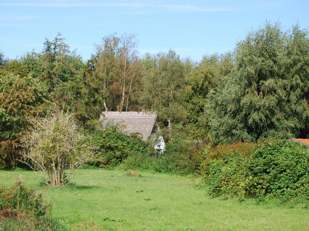 Ein Garten an der Unterkunft Romantische Finnhütte in der Heide