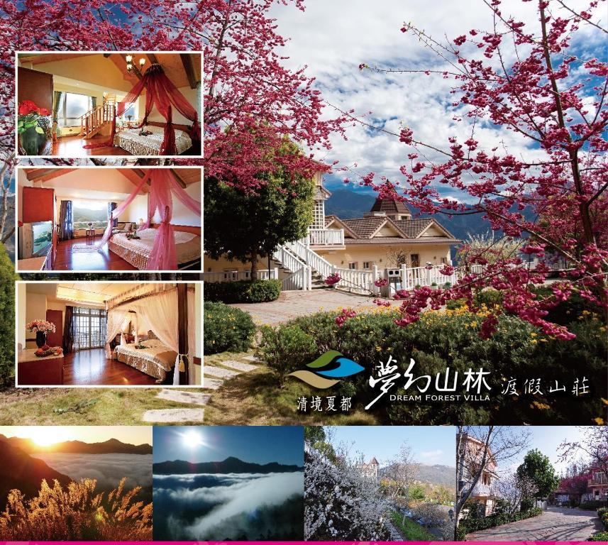 清境夏都夢幻山林渡假山莊游泳池或附近泳池的景觀