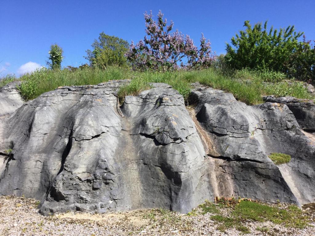The Rocks Chalets