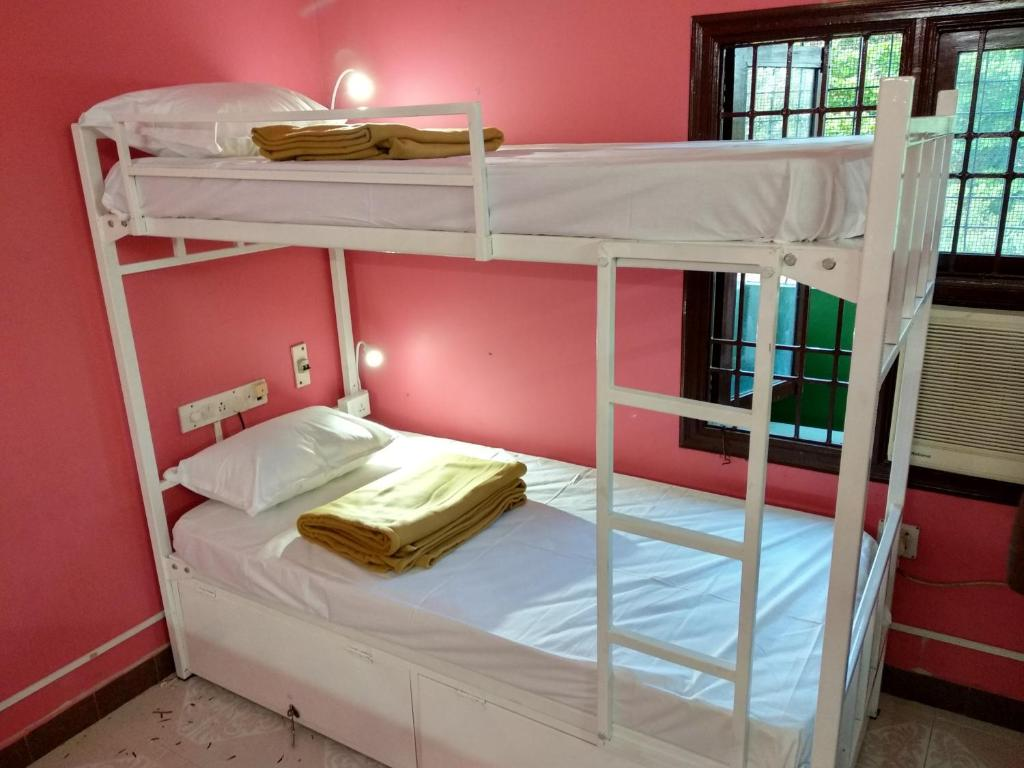 A bunk bed or bunk beds in a room at Droid Hostel