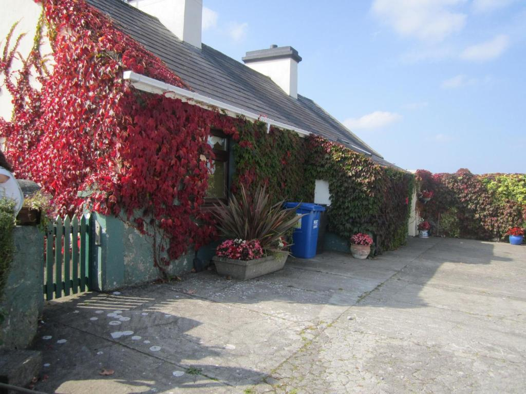 Friars Quarter House B&B, Ballinrobe Updated 2020 Prices