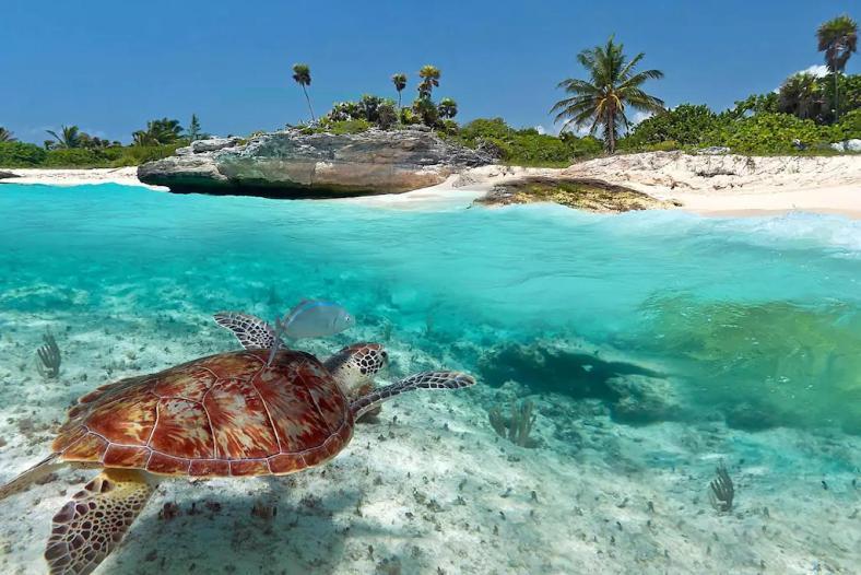 Gos Beach Villa Cancún Mexico