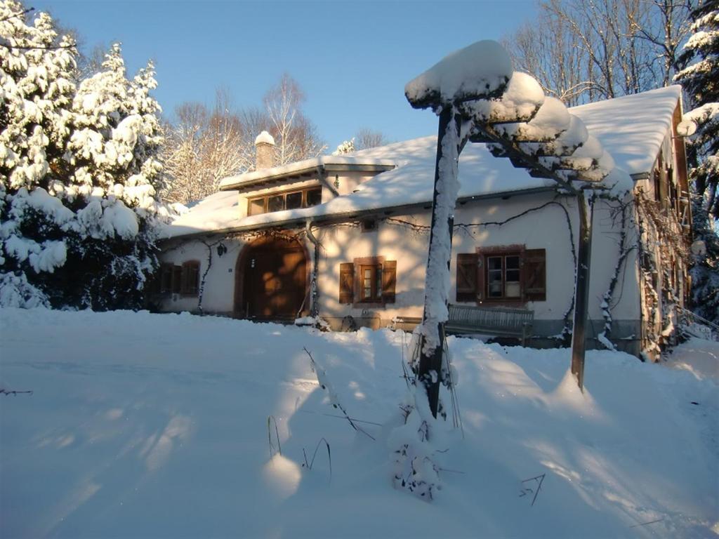 PtitMonde in de winter