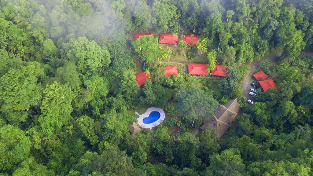 A bird's-eye view of Esquinas Rainforest Lodge