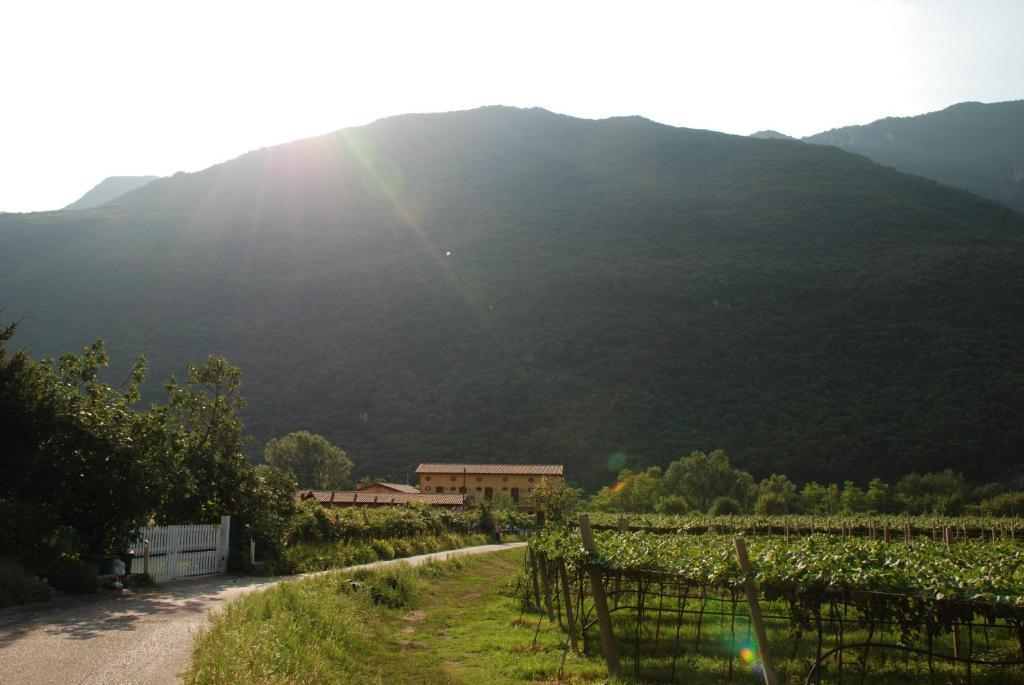 Vista generica sulle montagne o vista sulle montagne dall'interno dell'agriturismo