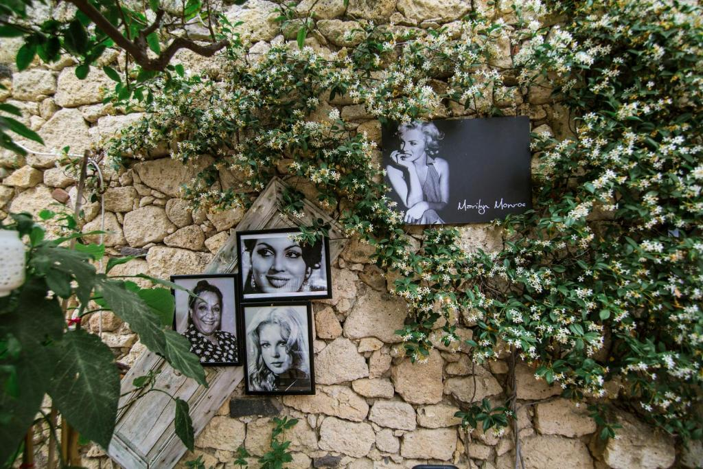 Afet Hanim Konagi