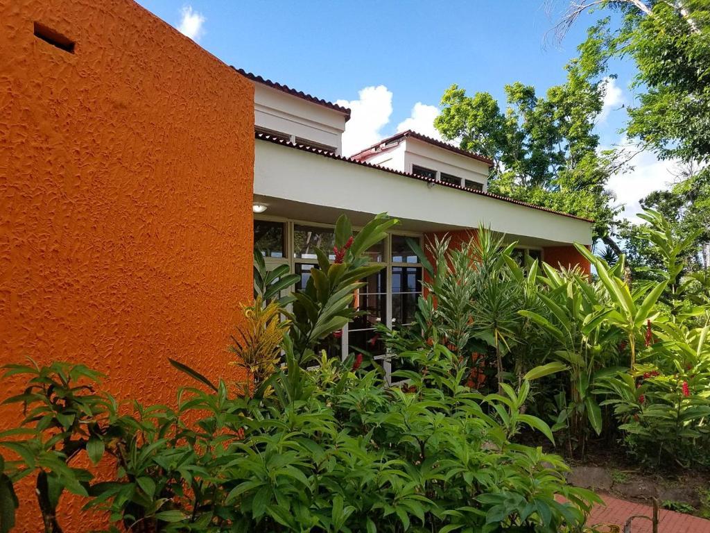 Villa Hermosa en El Yunque, Rio Grande, Puerto Rico ...