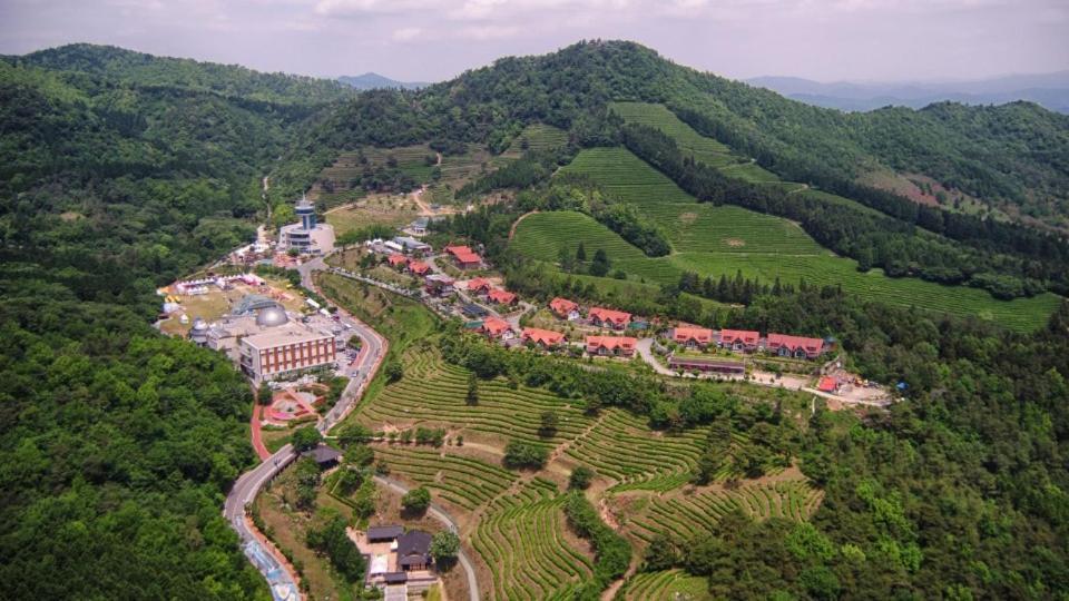 A bird's-eye view of Nokcha Resort