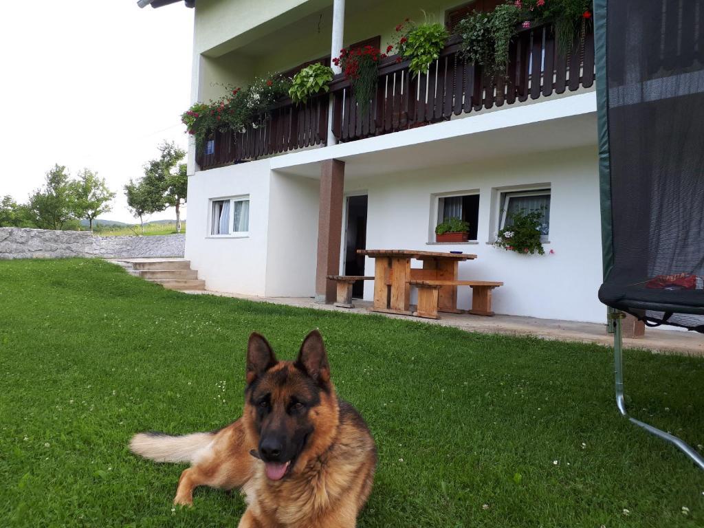 House Josipa
