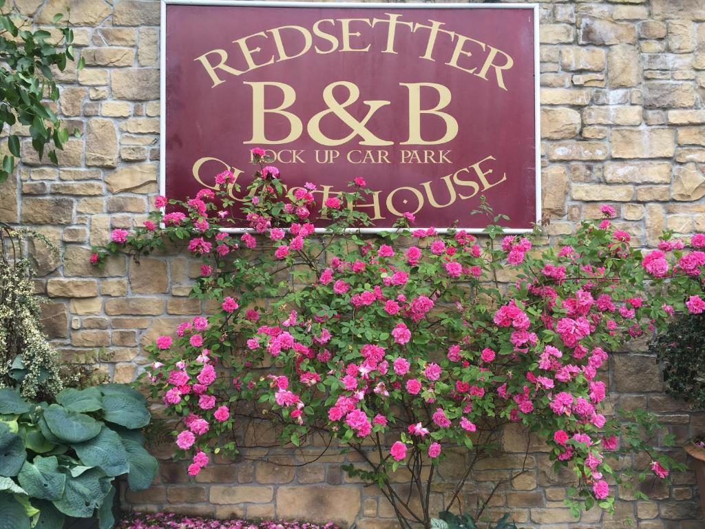 County Carlow BBW Big & Beautiful Dating Website, County