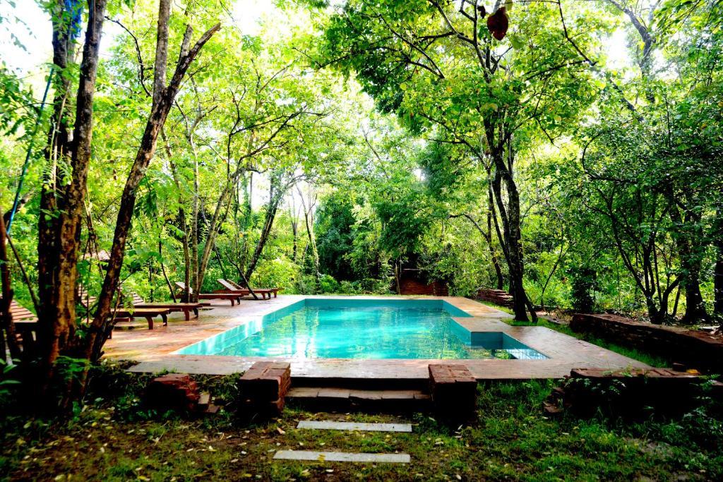 The swimming pool at or close to Mahagedara Wellness Retreat