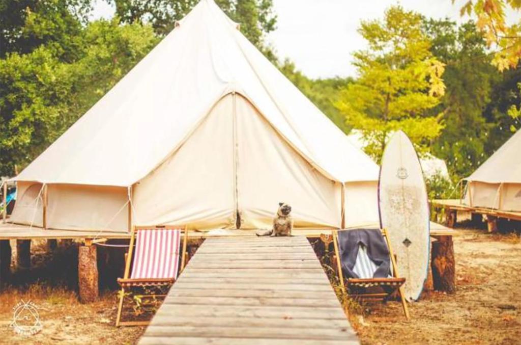 Dreamsea Surf Camp Tamarindo - Josh Vignona