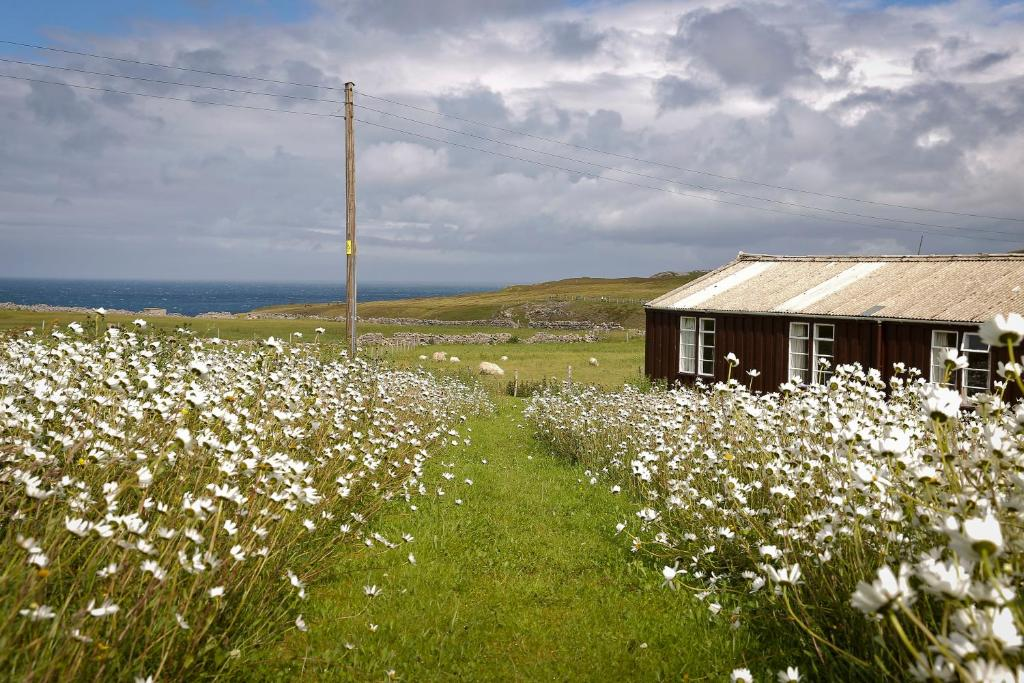Durness SYHA Hostelling Scotland in Durness, Highland, Scotland