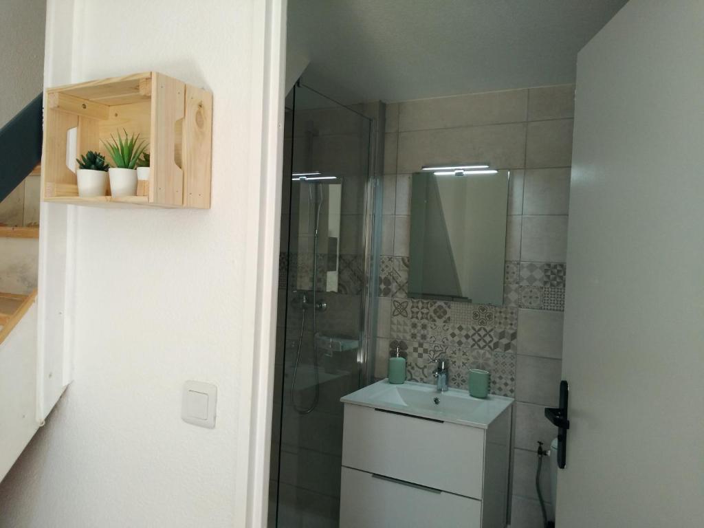 Filtre Piscine Lave Vaisselle petit loft t2 bis mezzanine avec jardin et piscine, vic-la