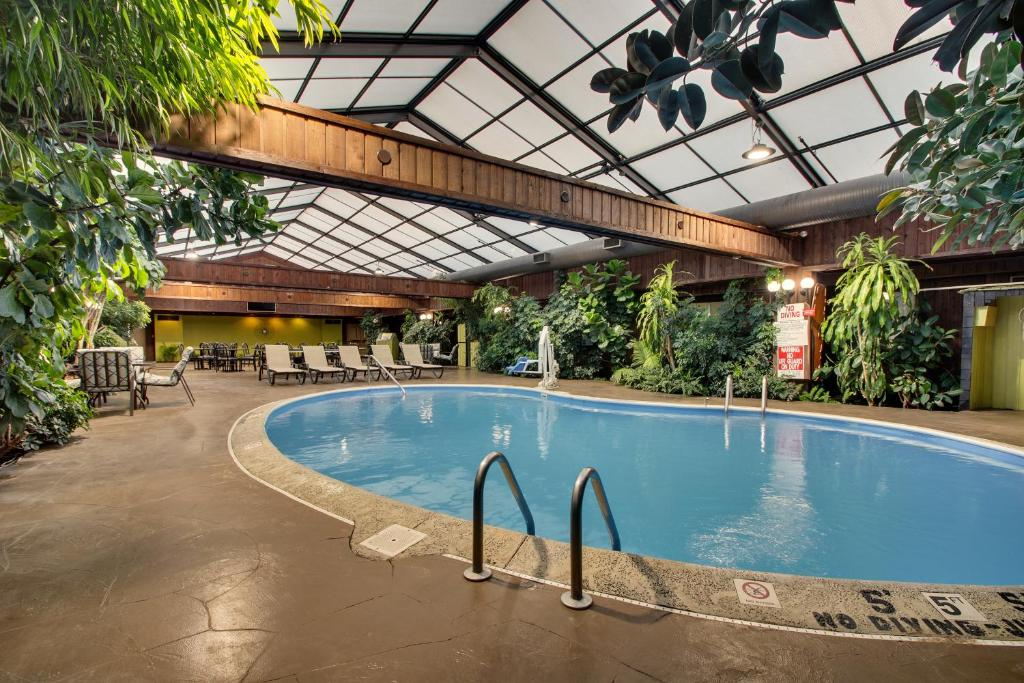 The swimming pool at or near Wingfield Inn & Suites