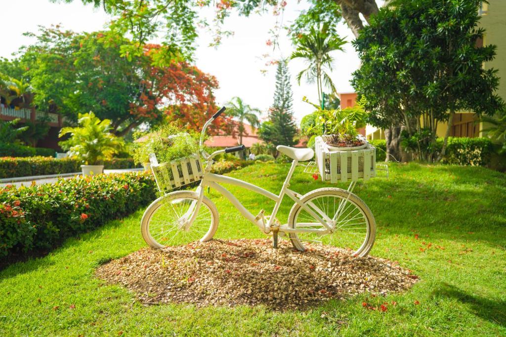 Un jardín fuera de BelleVue Dominican Bay - All Inclusive
