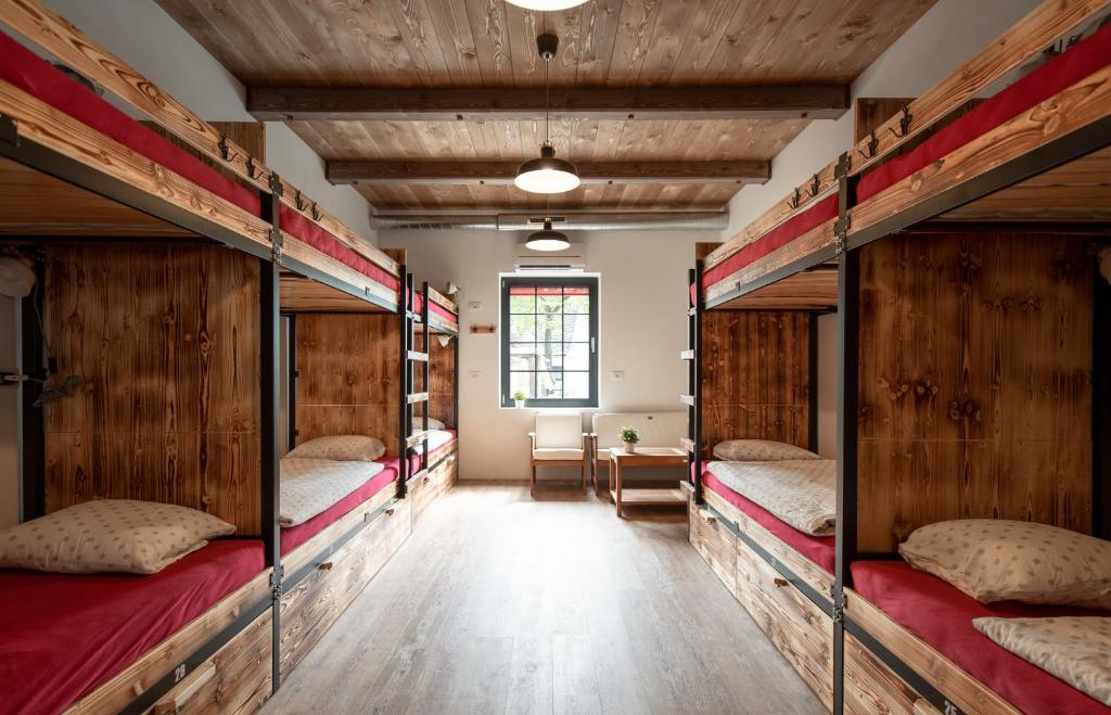 A bunk bed or bunk beds in a room at Turn Hostel