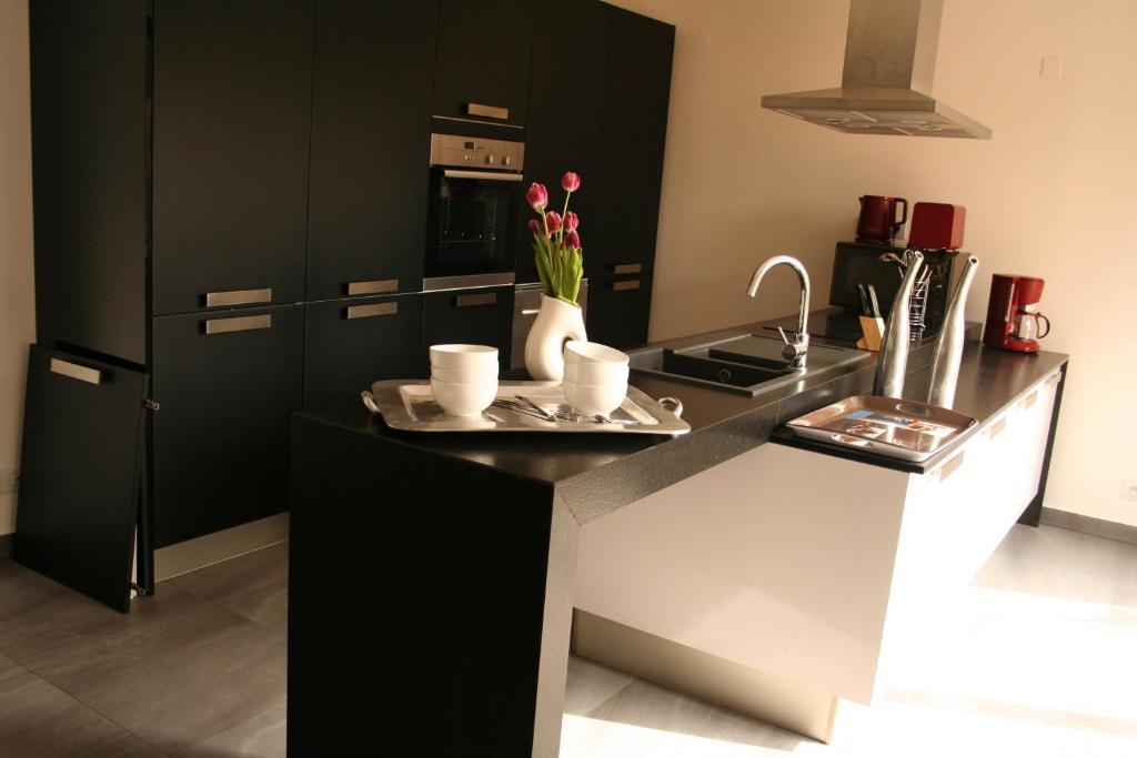 Cuisine ou kitchenette dans l'établissement Perle Bleue - Lille