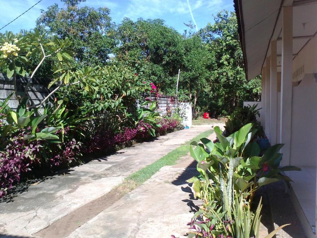 Rent A Wreck Nj >> Bali Natural Homestay Jimbaran Indonesia Booking Com