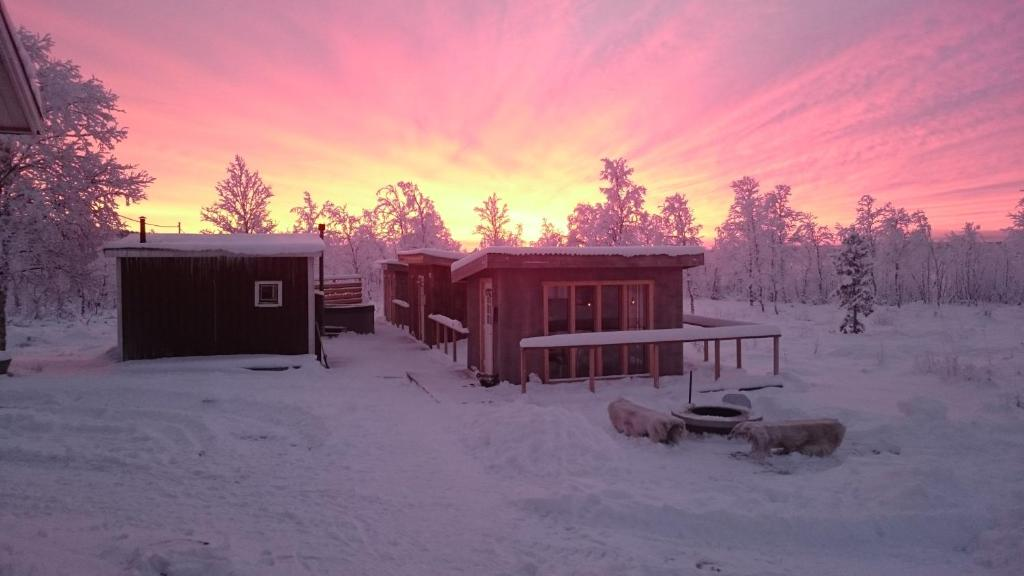 Arctic Gourmet Cabin Kiiruna Paivitetyt Vuoden 2020 Hinnat