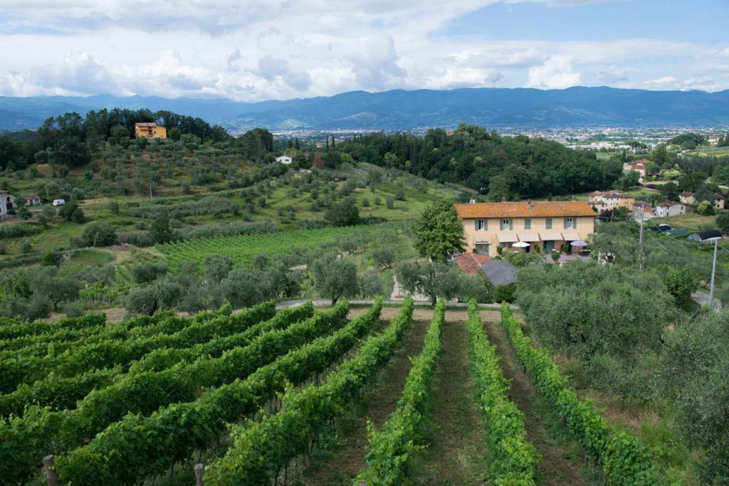 A bird's-eye view of Bello Stare Tuscan Resort