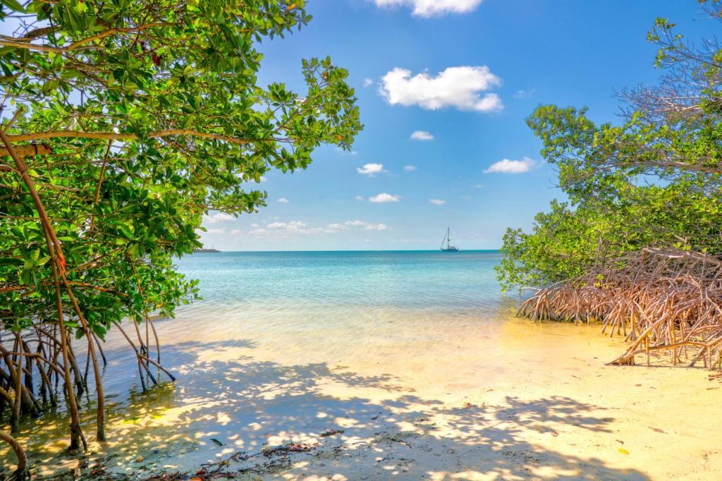 Fiesta Key RV Resort Waterfront Cottage 43