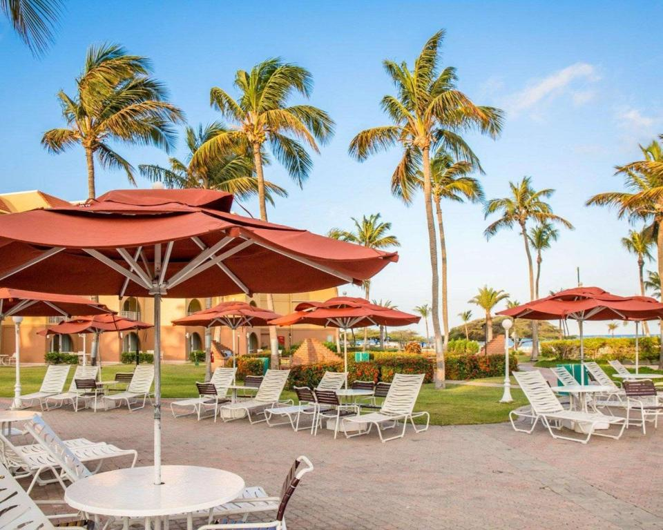 La Cabana Resort Aruba Palm Eagle