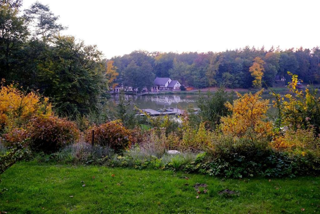 Ein Garten an der Unterkunft Gut Klostermühle