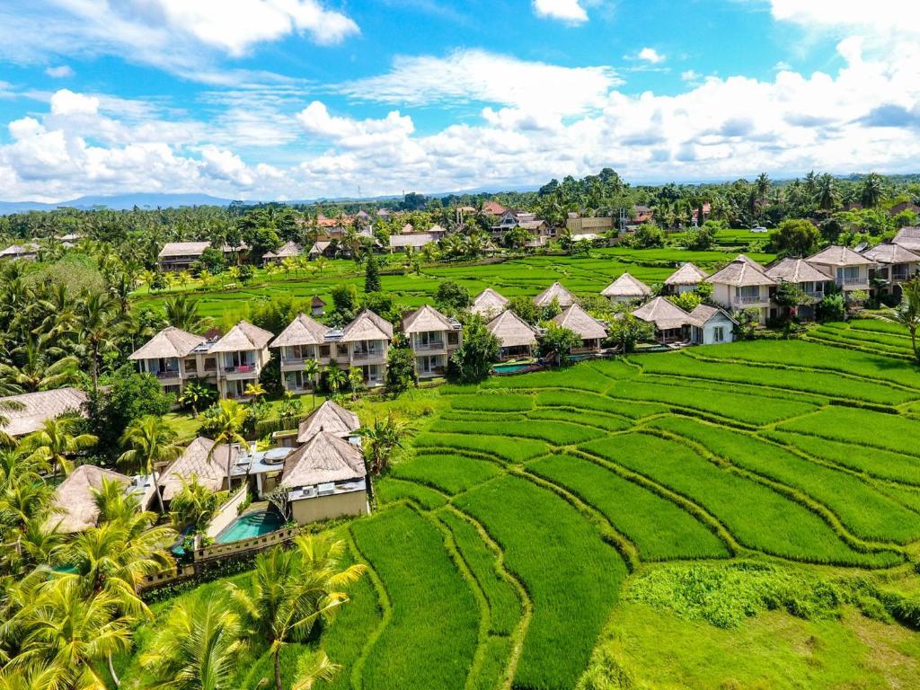 Download 62 Koleksi Wallpaper Pemandangan Di Bali Gratis Terbaru
