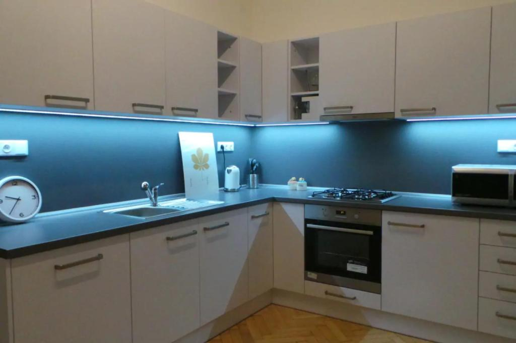 A kitchen or kitchenette at The biggest flat in Brno