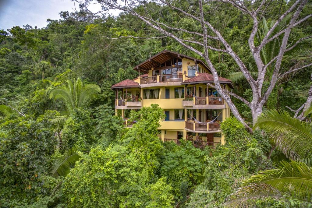 Sleeping Giant Rainforest Lodge*****