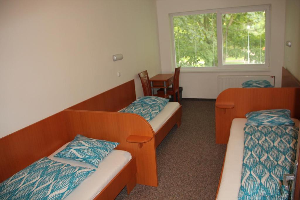 Postel nebo postele na pokoji v ubytování Morava Camp Motel & Campsite