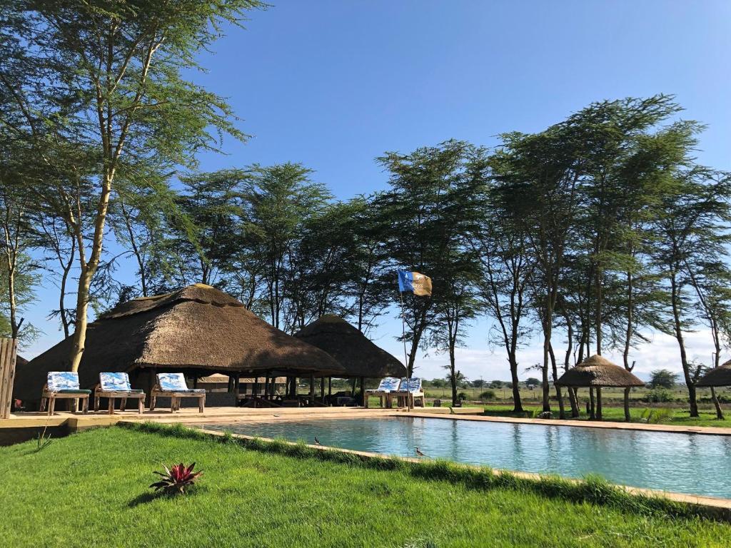 The swimming pool at or near Africa Safari Lake Manyara