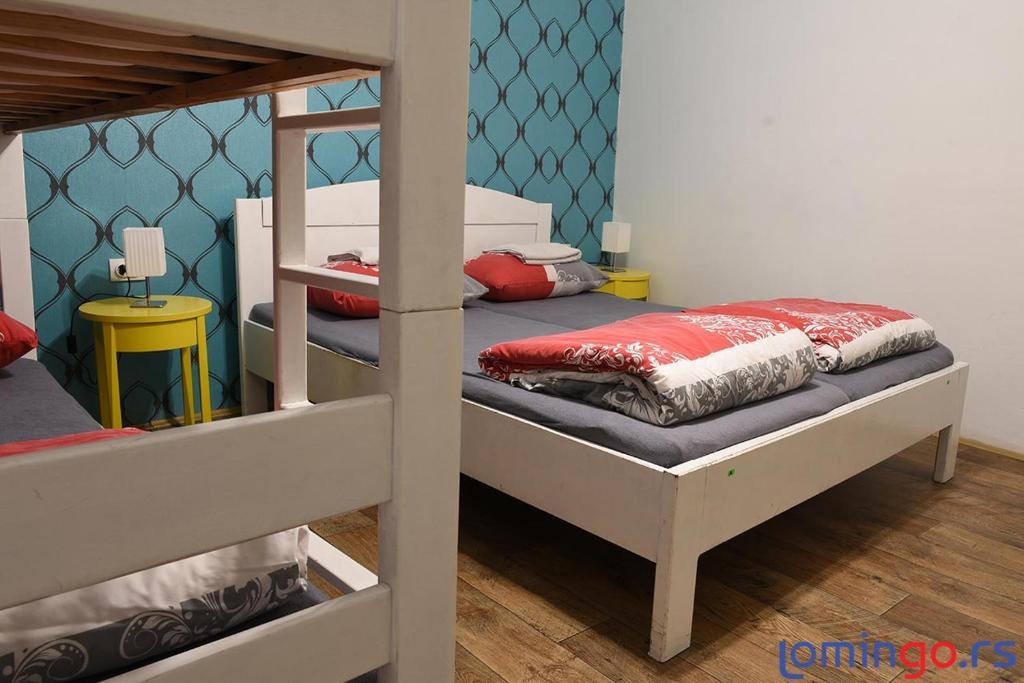 Hedonist Hostel
