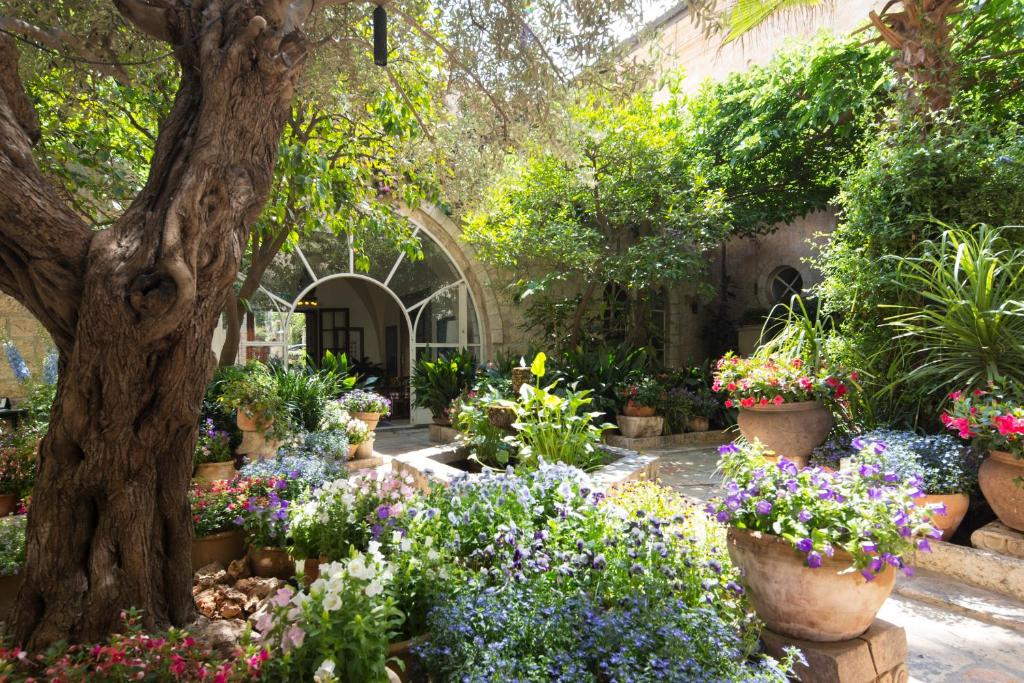 A garden outside The American Colony Hotel - The Leading Hotels of the World