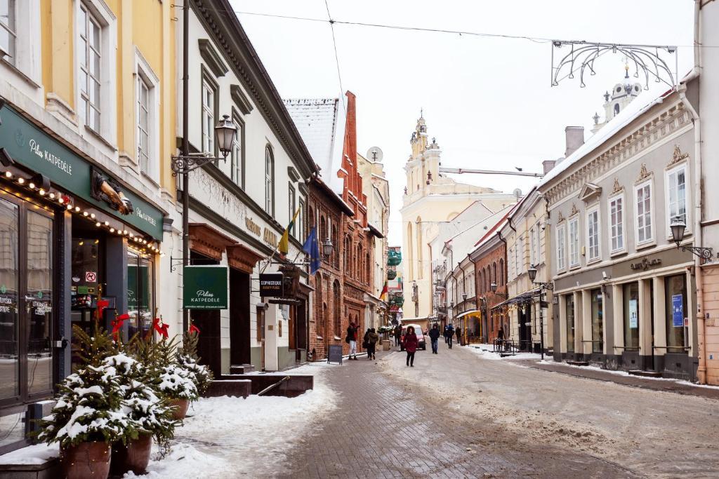 Woman Vilnius