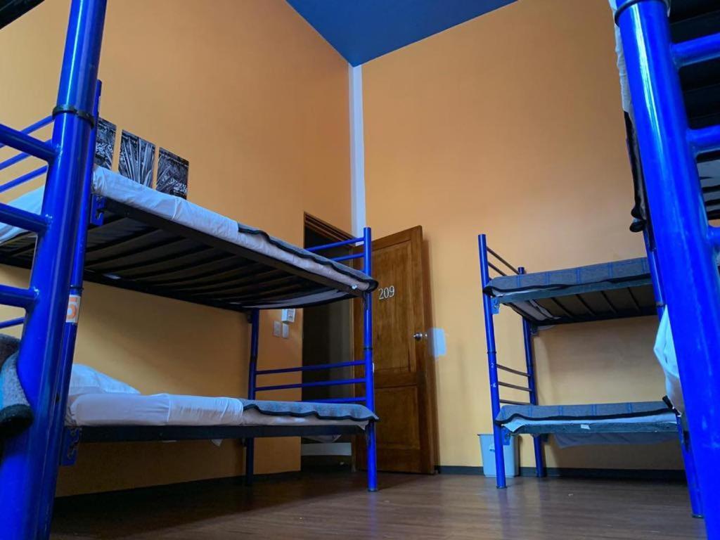 מיטה או מיטות קומותיים בחדר ב-Hostal Amigo