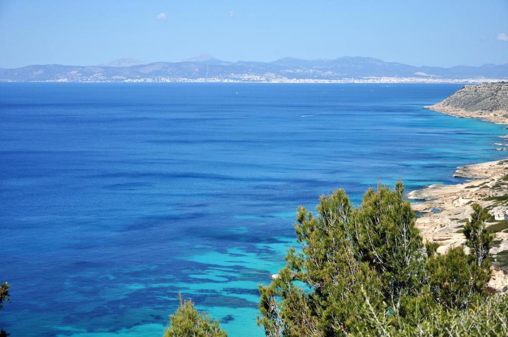 Villa Cala Sa Torre Mallorca Spanien Sa Torre Booking Com